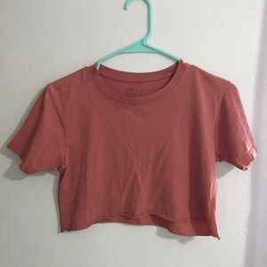 John galt/brandy Melville crop top